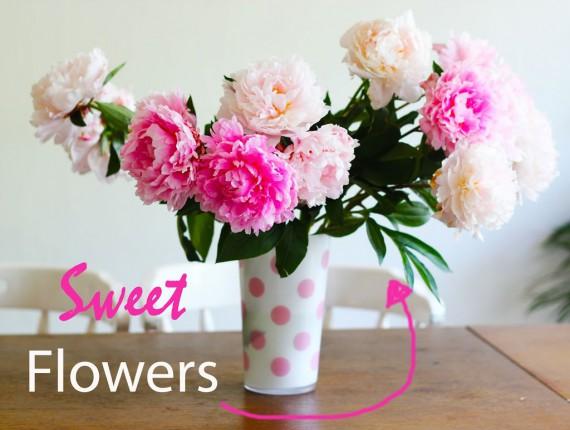 Sweet Flowers!