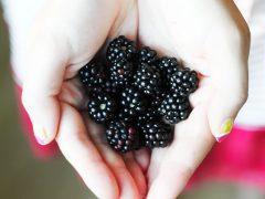 RECIPE | Blackberry Yoghurt Icecream