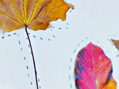 DIY   Autumn Art