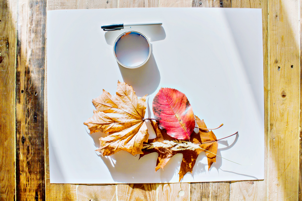 DIY | Autumn Art
