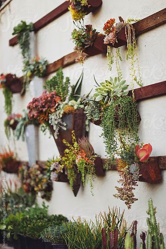 Hanging Wall Garden Diy : Diy roundup clever wall decor ideas