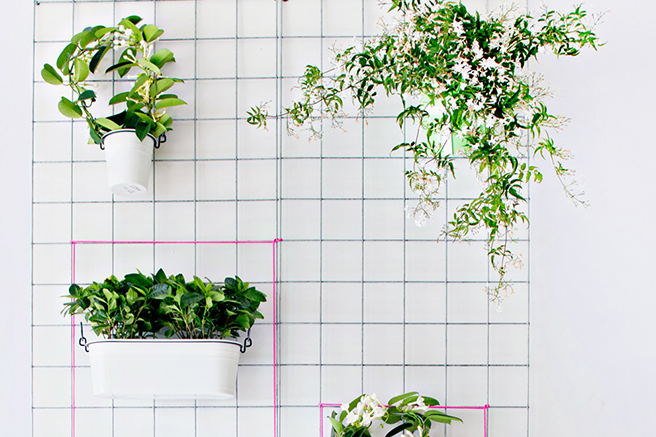 featured-_-wall-planter