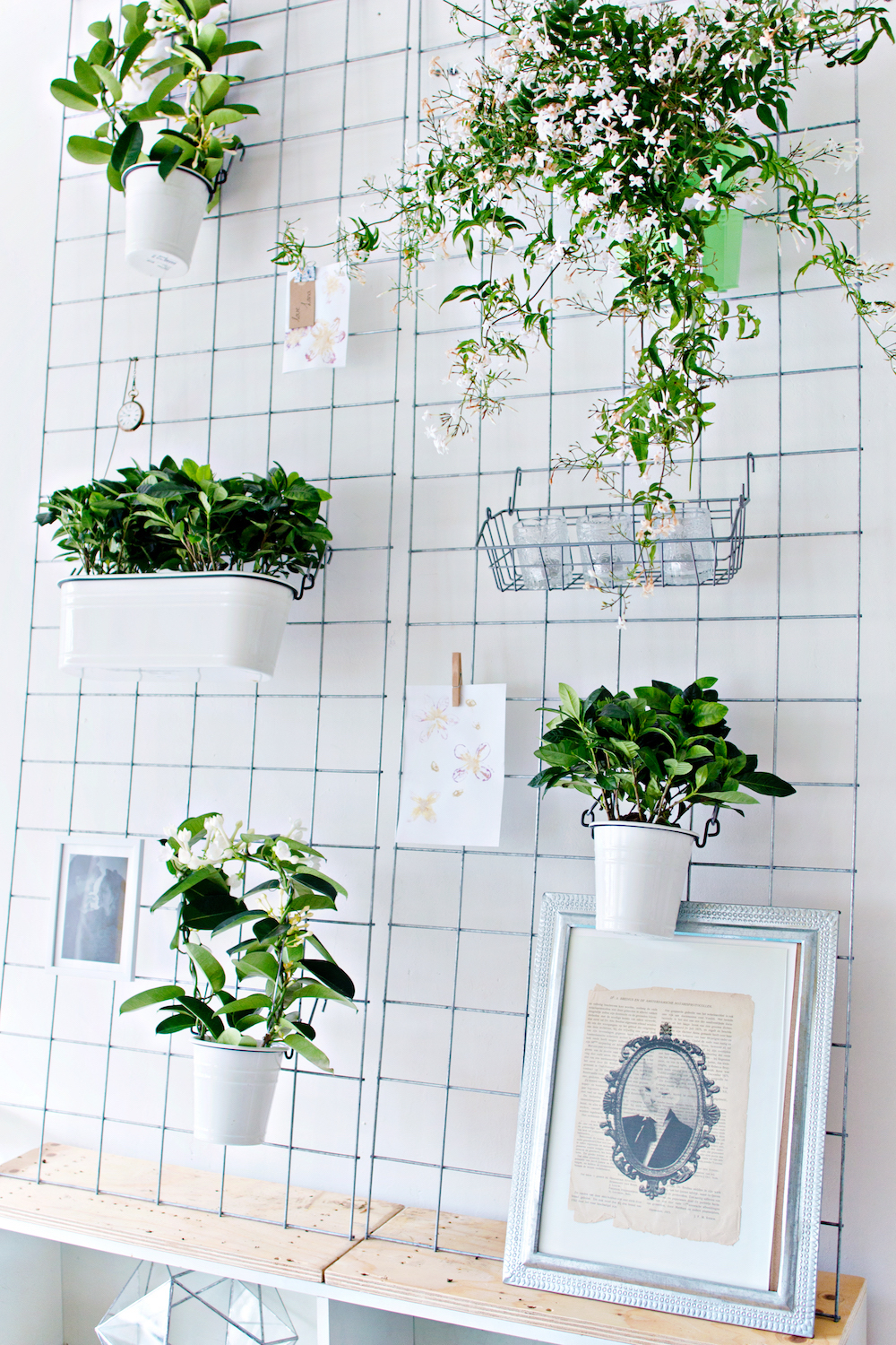 GREEN DIY | Wall Planter