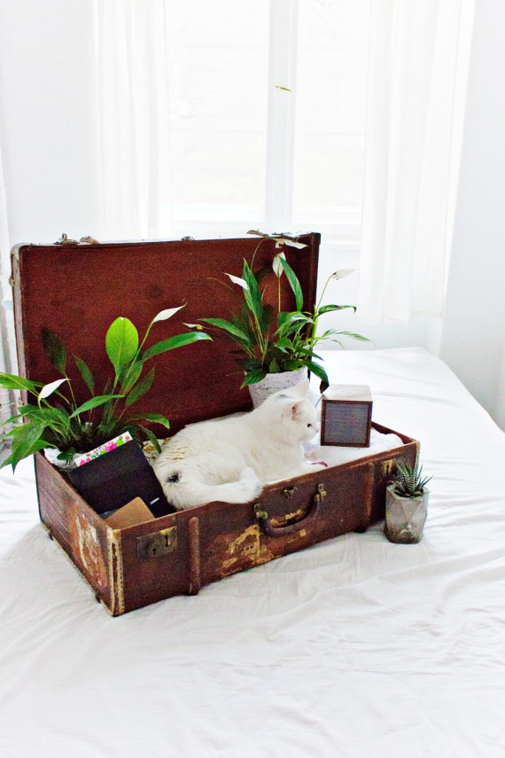 LIVING ABROAD   How to Make Your Temporary Home Feel Like Home