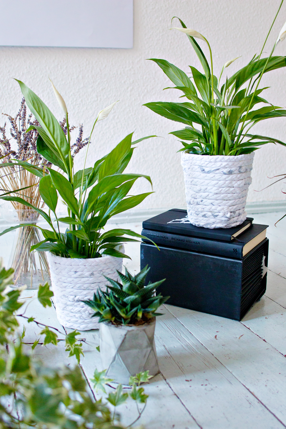 UPCYCLING DIY | Braided Tee Planter
